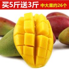 海南贵妃芒果5斤装新鲜水果特产红金龙一级中大果三亚芒果自然熟