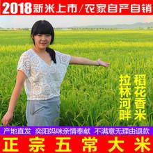 奕阳农家米自产自销 包邮 18年新米东北黑龙江五常稻花香大米 十斤