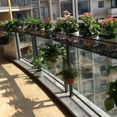 植物架铁艺栏杆花架阳台多层吊兰种菜花盆架壁挂货架悬挂护栏花架