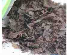 子兰月季东北发酵营养土腐殖土兰花君橡树专用腐叶土松针土
