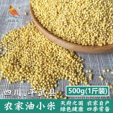 小米粥月子米 粮油米面杂粮 黄小米 四川农家自产油小米 500g
