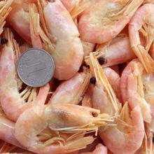 新鲜野生冷冻北极虾熟冻甜虾即食冰虾500g浙江 包邮