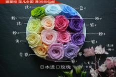 中大号日本进口玫瑰永生花花材保鲜花干花批花盒DIY满包邮重庆