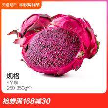 新鲜水果现摘实惠装 350g 海南蜜宝红心火龙果4个 中果 250