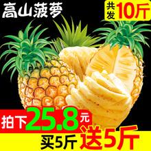 新鲜菠萝水果香水小菠萝大波萝凤梨手撕带箱10斤装 包邮 买1送1