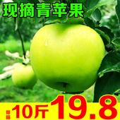 青苹果水果新鲜10斤带箱当季孕妇酸甜脆山西嘎啦丑孕妇红富士包邮