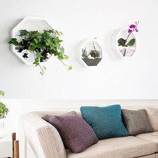 壁挂花盆欧式田园客厅阳台多肉植物奶茶店墙壁装饰创意壁饰墙饰