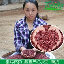 农家自产 赤豆红豆 新货 红小豆 粮油米面五谷杂粮非赤小豆500g