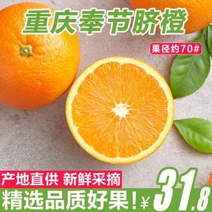 现摘现发 重庆奉节脐橙新鲜水果斤中大果纽荷尔橙子包邮赣南脐橙橙子水果