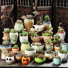 多肉花盆多肉植物花盆粗陶绿植物陶瓷简约个性创意小花盆素烧盆栽