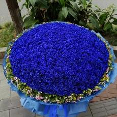 999朵蓝色妖姬蓝玫瑰成都同城鲜花速递北京上海深圳郑州西安花店