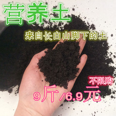长白山花土多肉土营养土腐蚀土腐殖土腐叶土松针土 种菜土 包邮