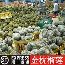 【顺丰现货速发】泰国进口金枕头榴莲3-9斤胜猫山王香甜糯水果