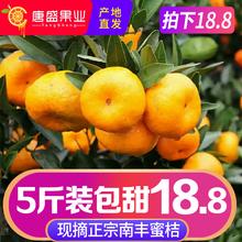 包邮 正宗江西南丰蜜桔小贡桔薄皮橘子新鲜水果10当季现摘现发5斤