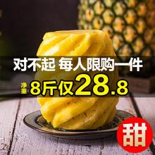 应季手撕香水小波萝 云南金钻小凤梨8斤菠萝水果新鲜现摘批发 包邮