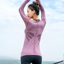 专业长袖 春季新款 瑜伽服上衣女透气速干性感网孔镂空运动健身服女