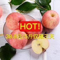 山东烟台栖霞红富士苹果水果果径80 85一级新鲜水果
