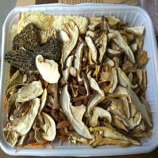 云南特产香格里拉松茸菌羊肚菌鸡枞菌野生菌火锅120克松茸山珍煲