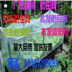 全新防虫网大棚专用蔬菜养殖网尼龙网防鸟网全新大棚防雹网包邮