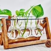 饰摆件 创意木架水培花瓶绿萝植物玻璃花器客厅小容器办公室桌面装