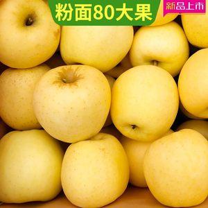 网红款黄金帅黄元帅<span class=H>苹果</span>水果黄香蕉刮泥宝宝5斤粉面沙甜面<span class=H>苹果</span>