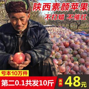 亏本30000件第二件0.1陕西红富士<span class=H>苹果</span>水果新鲜包邮当季批发冰糖心