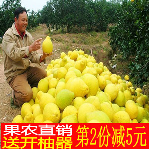 纯甜沙田柚包邮 梅州金<span class=H>柚子</span>2个 新鲜水果正宗特产非容县红心蜜柚
