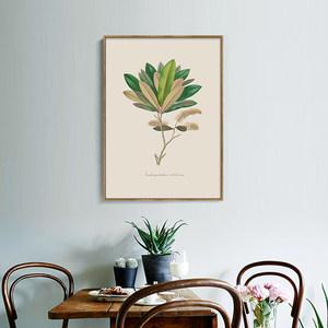 复古欧美草木标本<span class=H>装饰画</span>餐厅客厅三联有框画油画布现代时尚壁挂画