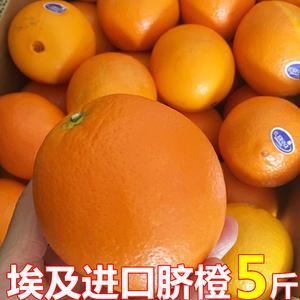 进口埃及<span class=H>橙</span>子时令多汁新鲜孕妇水果5斤大果榨汁奶茶店