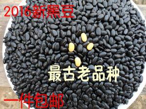 2018新黑豆2500g黄芯小黑豆农家自产黄心新黑豆