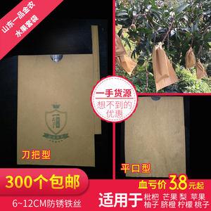 枇杷专用套袋梨子套袋<span class=H>桃</span>子苹果芒果套袋脐橙柚子<span class=H>纸袋</span>柠檬水果套袋