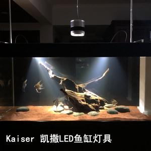 Kaiser 凯撒 原生南美异形鼠鱼缸三湖水草LED 射灯夹灯热带观赏鱼