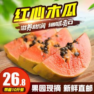 广西红心<span class=H>木瓜</span>水果新鲜包邮批发带箱10斤牛奶冰糖瓜特产果园现摘