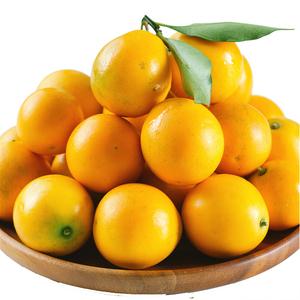 广西融安滑皮金桔新鲜包邮冰糖 小金橘 甜心脆皮金桔 <span class=H>水果</span>中果5斤