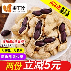 【黑玉珍_黑花生】18新货种籽 带壳生的黑皮熟山东大粒米晒干种子