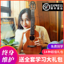 Snail Ukulele Female and Male Beginner Introduction to Peach Flower Core Whole Veneer Ukulele Little Guitar Ukraine