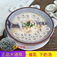 Authentic Datong grass tablets under the milk postpartum urging milk month child milking breast milk mother breast milk to send Wang do not stay soup