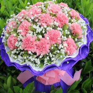 康乃馨鲜花速递杭州福州太原西安南京南通青岛长沙鲜花店同城送花