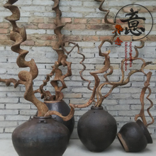 Natural Dragon Cane Decoration Flower Arrangement Dry Branch Home Restaurant Decoration True Dead Branch Tree Winding Modeling