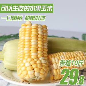 【现摘现发】云南<span class=H>水果</span>玉米带箱10斤新鲜应季甜玉米棒生吃蔬菜包邮
