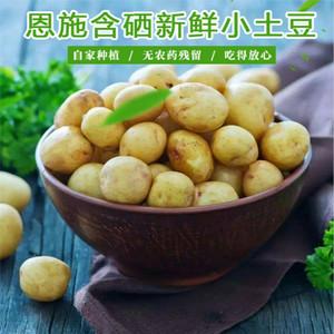 内蒙古土豆产地_【有机土豆图片】有机土豆图片大全_好便宜网