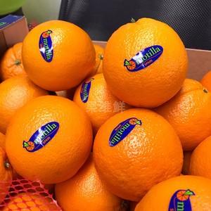 西班牙脐<span class=H>橙</span> 12颗 约7.5斤 新鲜水果 <span class=H>橙</span>子 motilla<span class=H>橙</span>子 香甜多汁