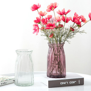 欧式简约玻璃花瓶水养植物器皿玻璃瓶客厅摆件鲜花插花<span class=H>水培</span>干花瓶