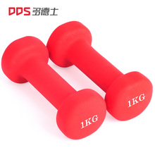 Dodds Home Fitness Yoga Lady Dumbbell Plastic Arm Slim Arm Plastic Dumbbell Fitness Equipment 2KG Pair